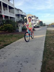 ava oib bike